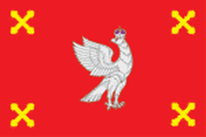 Флаг Шуйского района