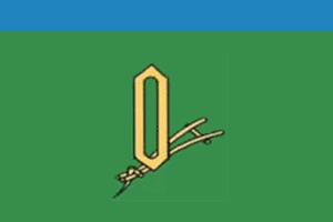 Флаг Вичугского района